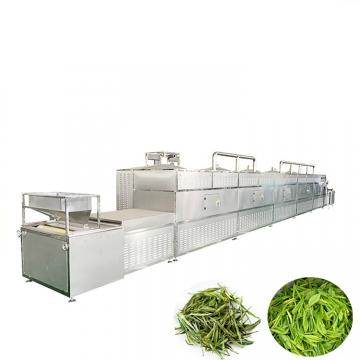 Customized Continuous Mesh Belt Drying /Dryer / Drier Equipment for Fruit/Vegetable/Herb Slice