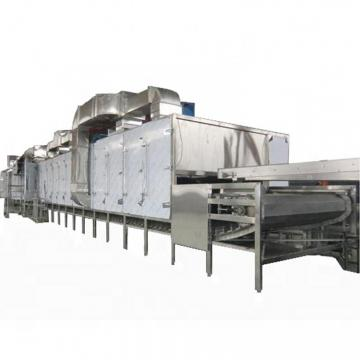 Beetroot Belt Conveyor Dryer Machine